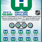 CT Hartford Whalers 1229 Covered